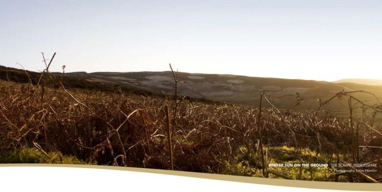 haggis spring rolls landscape